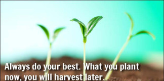 Always-do-your-best.-what-you-plant-now-you-will-harvest-later